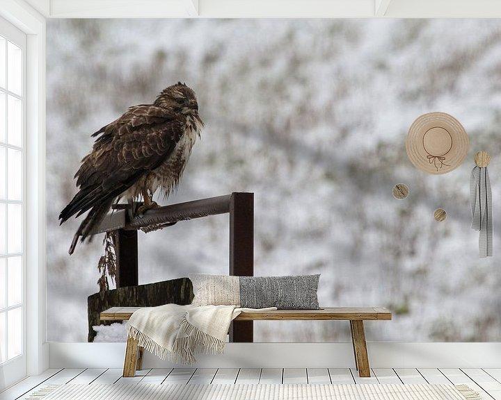 Impression: Buse dans la neige sur Anjo ten Kate