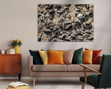 Mosselen en schelpen in het zand van Percy's fotografie