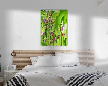 BeeS In The Garden Abstract van Annaluiza Dovinos