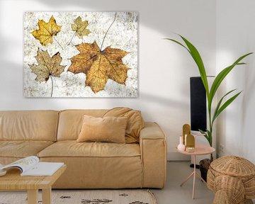 Die besondere Einfachheit der Blätter. von Klaartje Majoor
