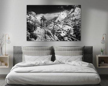 Zion National Park von Henk Meijer Photography