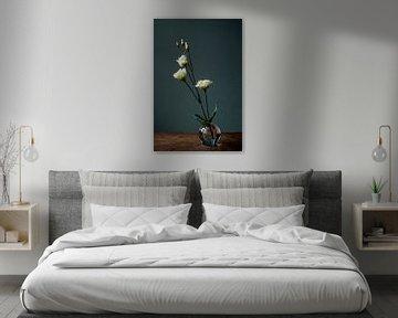 Foto print   witte rozen in glazen vaasje   Botanisch  