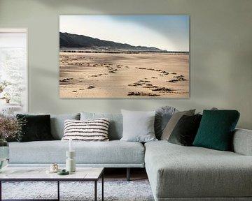 Opgeruwd zand met zicht op de duinen van Percy's fotografie