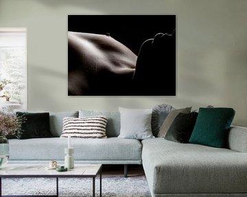 lowkey belichting von M  van den Hoven