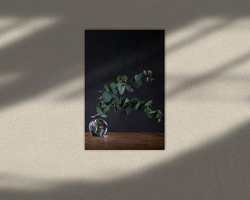 Grüne Zweige in Glasvase vor dunklem Hintergrund von Jenneke Boeijink