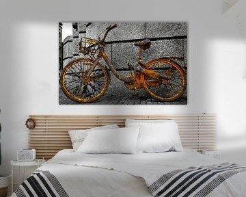 Mist iemand een fiets van Bert Koppe