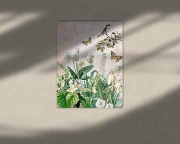 Im Garten mit den weißen Blüten von christine b-b müller