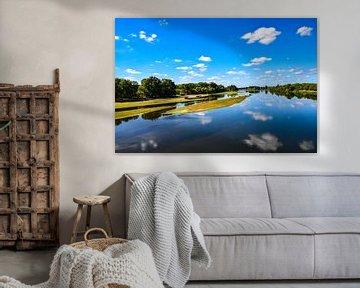 Loire van Ingrid de Vos - Boom