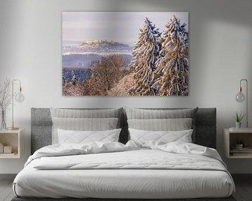 Uitzicht op de winterse Augustusburg van Daniela Beyer