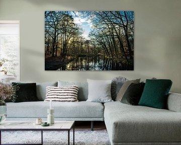 Heemstede Groenendaalsebos Zonsondergang kleur in januari 2021 van Bob Van der Wolf