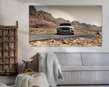 Bentley Flying Spur van Dennis Wierenga