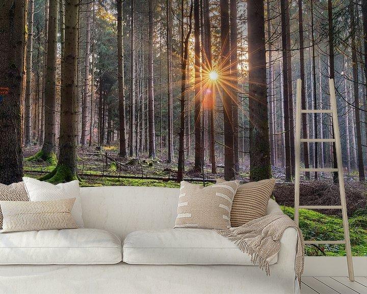 Beispiel fototapete: Dezembersonne von Uwe Ulrich Grün