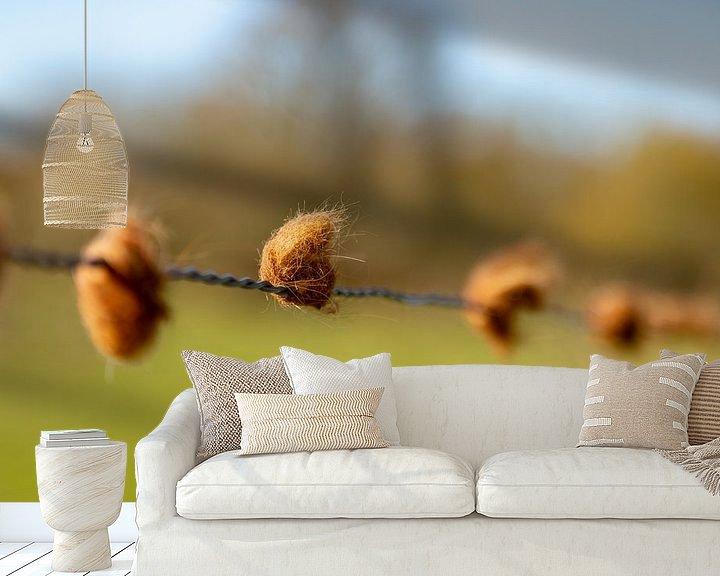 Sfeerimpressie behang: Bolletjes haar van stieren aan een hek van Percy's fotografie