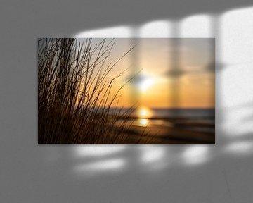 Helmgras met strand bij avondlicht van Percy's fotografie