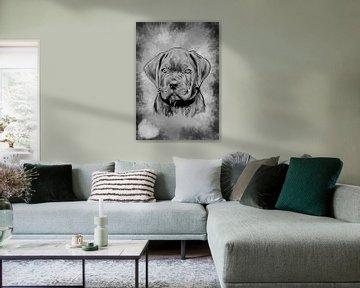 Carne Corso pup digitale tekening