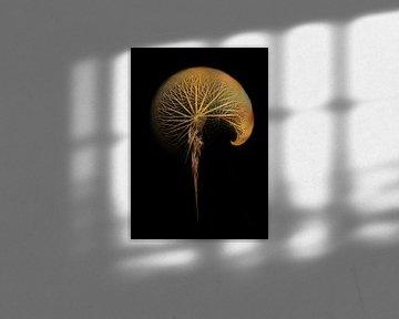 Fraktale abstrakte Kunst Pusteblume #Fraktale #Abstrakt von JBJart Justyna Jaszke