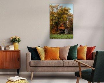 De Noordmolen van Twickel in de herfst van Arnoud van der Aart