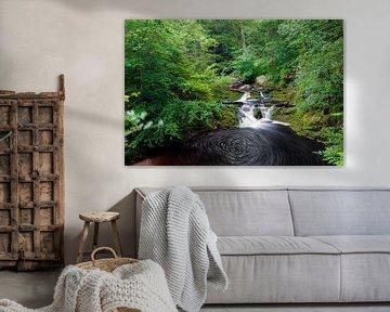 Waterval in de groene bossen van de Ardennen bij de Hoegne rivier van Kim Willems