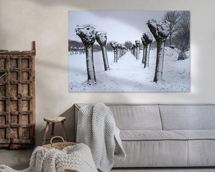 Beispiel: Poller Weiden im Schnee von Ingrid de Vos - Boom