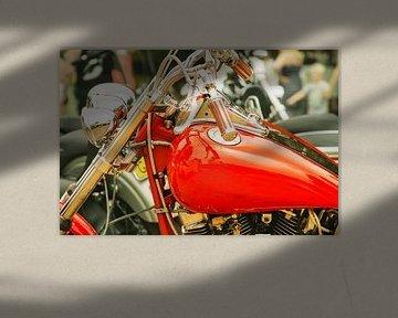 rode motorfiets van Bert-Jan de Wagenaar