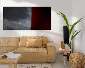 Kleine Möwe mit dunklen Wolken von Percy's fotografie