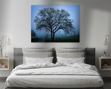 silhouet van een boom van Anita van Gendt