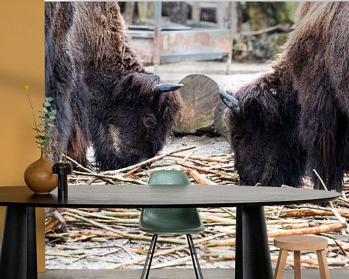 Beispiel fototapete: Blijdorp Zoo von Anuska Klaverdijk