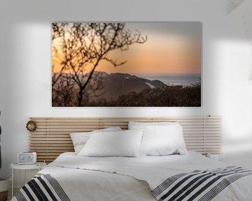 Lumière du matin dans les dunes sur Percy's fotografie