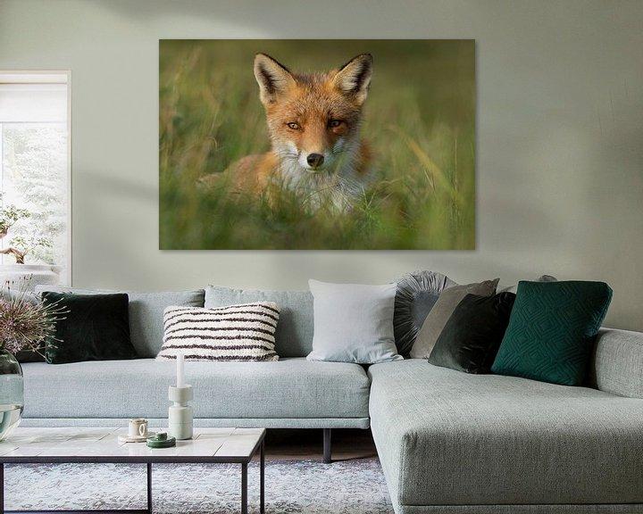 Beispiel: Süßer Fuchs von Yvonne van der Meij
