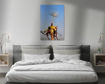 Paardebloem pluisjes von Dennis Claessens