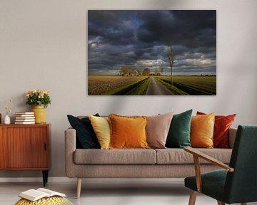 Warm winter licht verlicht het Gronings landschap op een januari dag terwijl donkere stormwolken voo van Bas Meelker