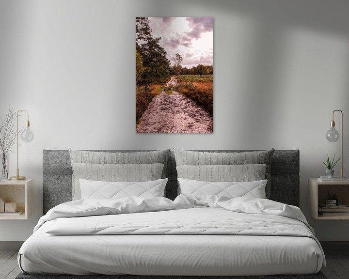 Sfeerimpressie: Herfstglorie van de Veluwe - Pad nr. 4 van Deborah de Meijer