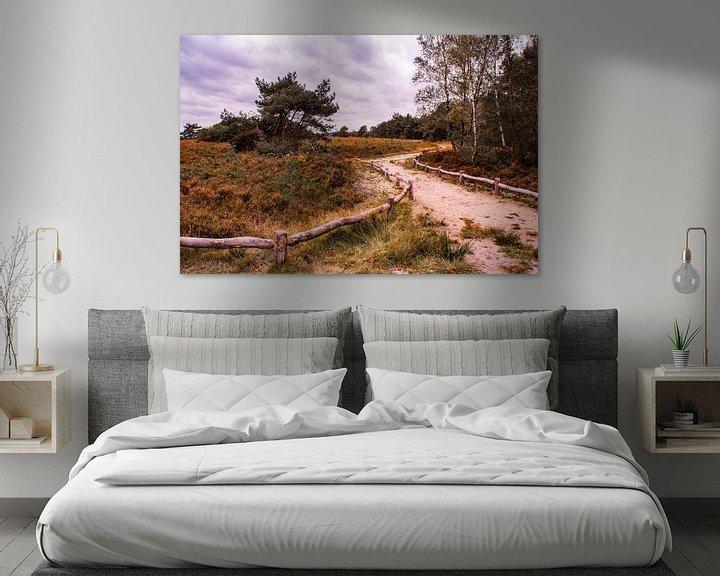 Sfeerimpressie: Herfstglorie van de Veluwe - Pad nr. 1 van Deborah de Meijer