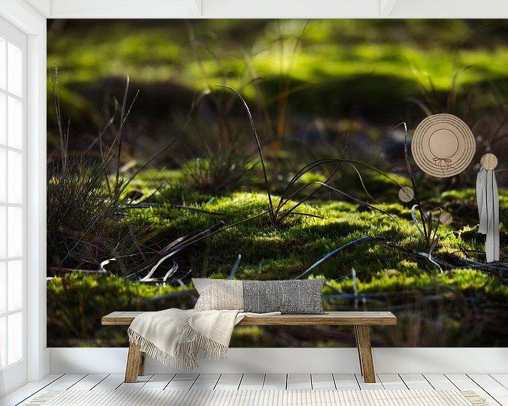 Beispiel fototapete: Grashalme von Martijn Tilroe