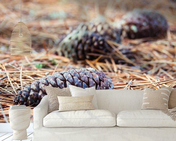 Beispiel fototapete: Tannenzapfen auf dem Boden von Martijn Tilroe
