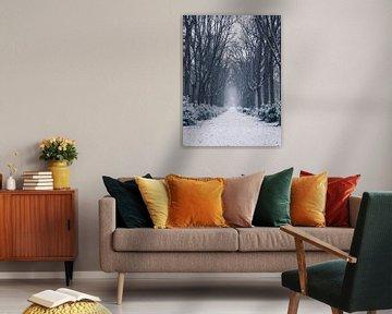 Mysteriöser Winter im Wald