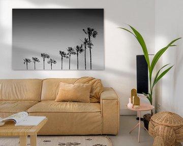 California Vibes | Monochrom von Melanie Viola