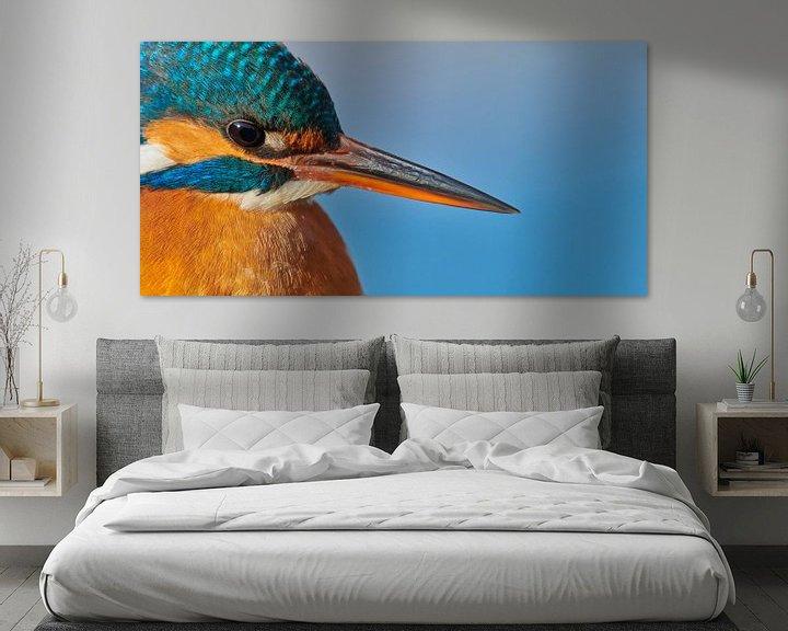 Impression: Martin-pêcheur - portrait sur IJsvogels.nl - Corné van Oosterhout