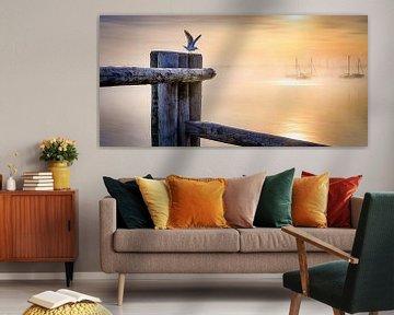 LP 71337546 Möwe an einem Holzpfahl bei Sonnenaufgang von BeeldigBeeld Food & Lifestyle