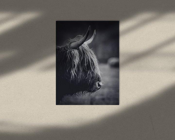Sfeerimpressie: Schotse hooglander close-up zwart wit in de Nederlandse natuur van Maarten Oerlemans