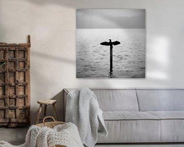 Kormoran am See im Morgennebel   stimmungsvoll schwarz-weiß von ellenklikt