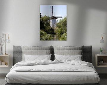 Eine kleine holländische Windmühle an einem Teich mit Grünpflanzen in Schiedam, Niederlande, im Somm von N. Rotteveel