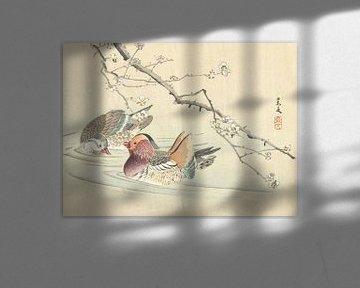 Zwei Enten von Matsumura Keibun - 1892