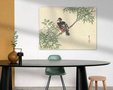 Schwarzer und roter Vogel von Matsumura Keibun - 1892