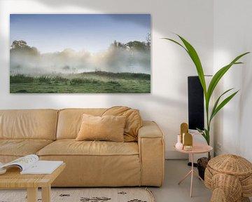 Mist in het Markdal ,Breda van Saskia Dingemans