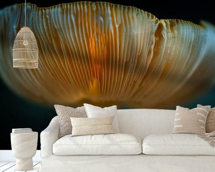 Sfeerimpressie behang: Doorschijnende paddenstoel met zonlicht van Fotografiecor .nl
