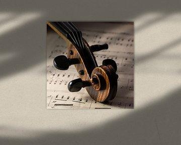 viool, muziekinstrument van Klaartje Majoor