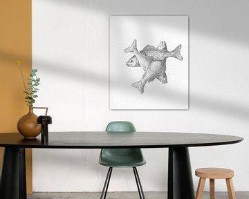 Drei kreuzförmige Fische von Jean-Bernard Duvivier