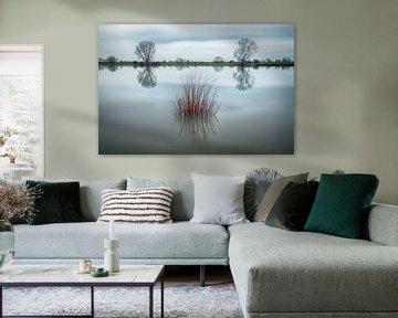 Spiegelend water van Mark Bolijn