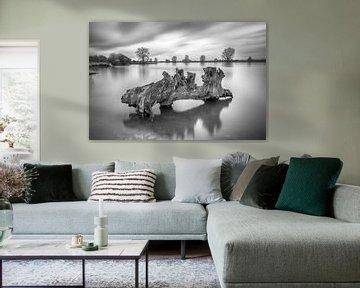 Kunst an der Maas von Mark Bolijn